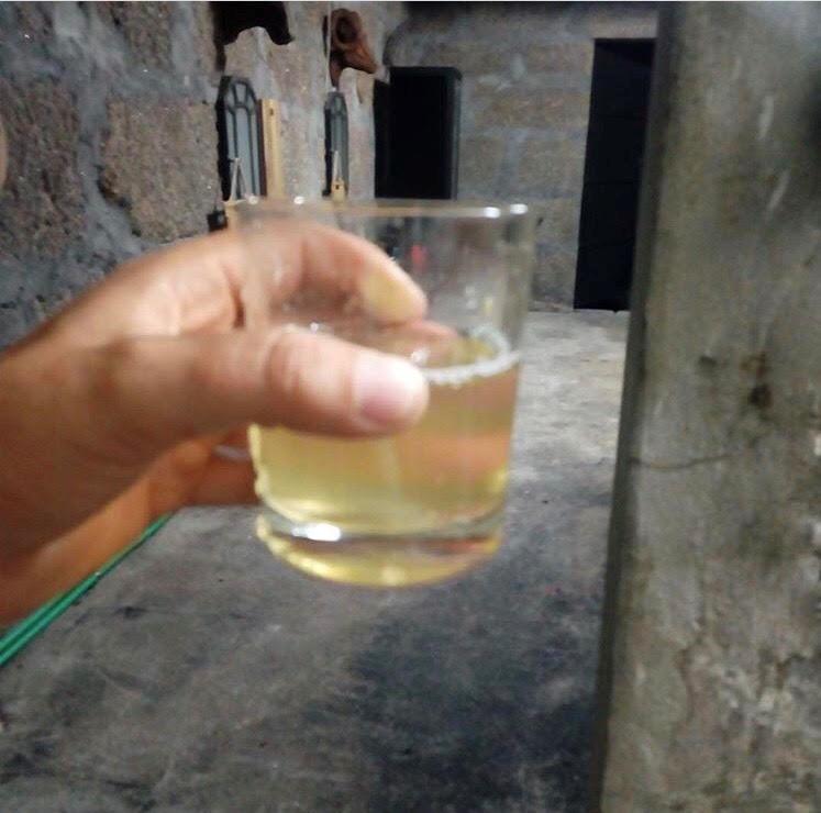 vinho produzido family secrets residences douro